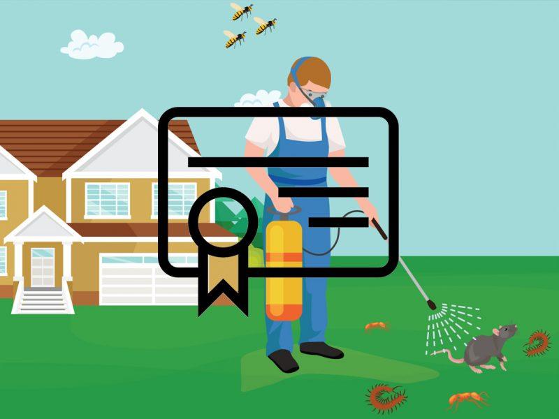 Sağlık Bakanlığı & MSDS Sertifikalı Böcek İlaçlama